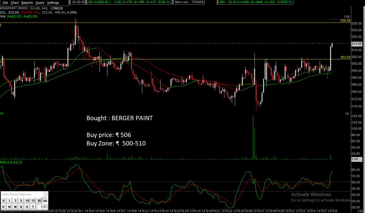 BERGEPAINT - chart - 470442