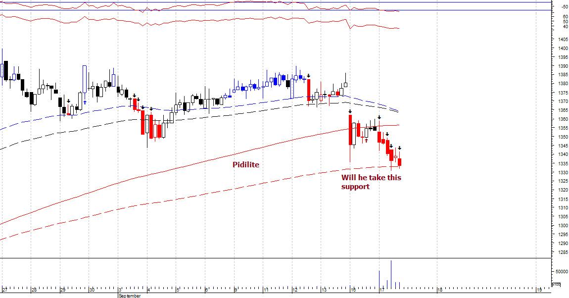 @mpriceplotting's activity - chart - 362434