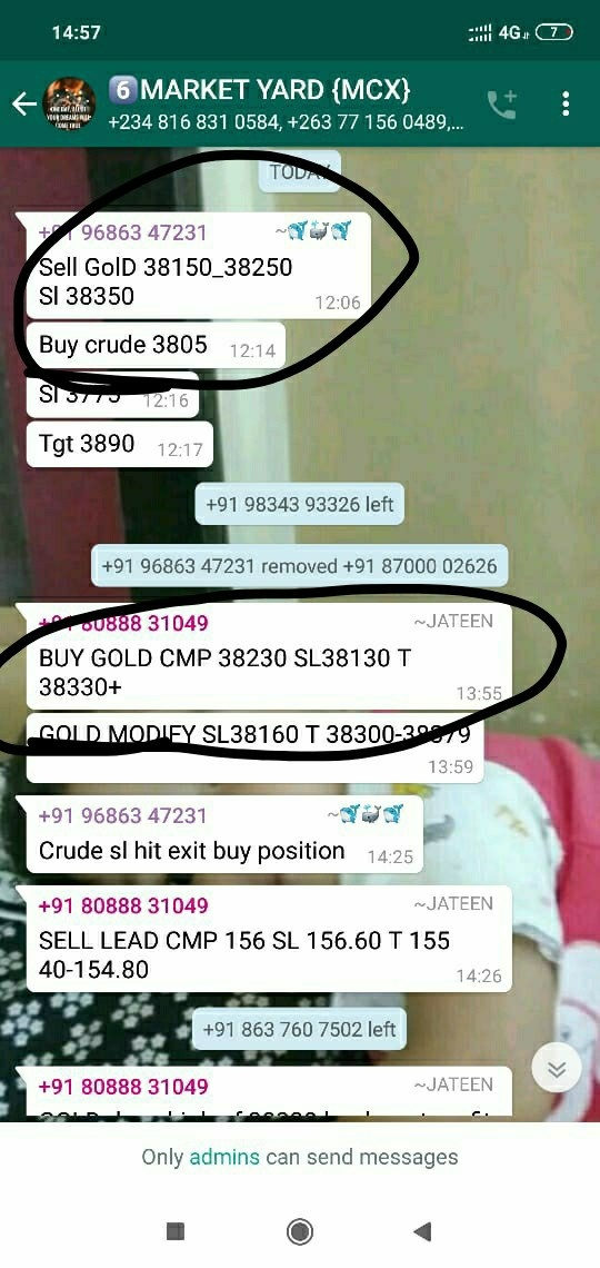 MCX:GOLD - 399353