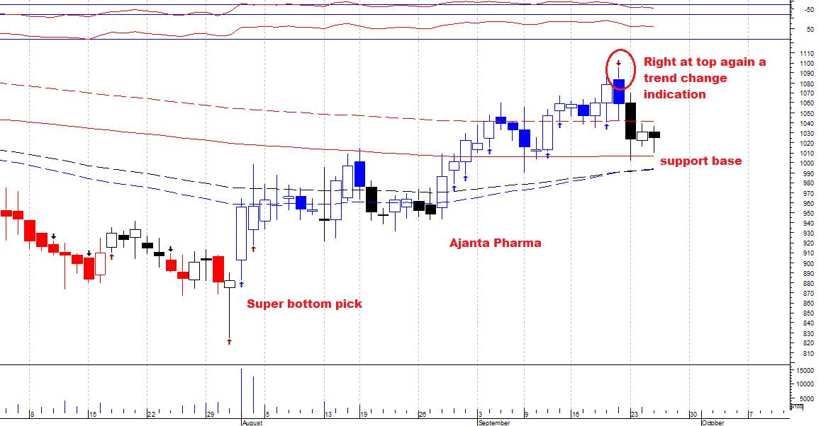 AJANTPHARM - chart - 377319