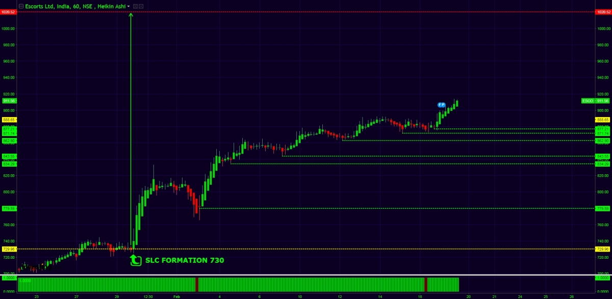 ESCORTS - chart - 612313