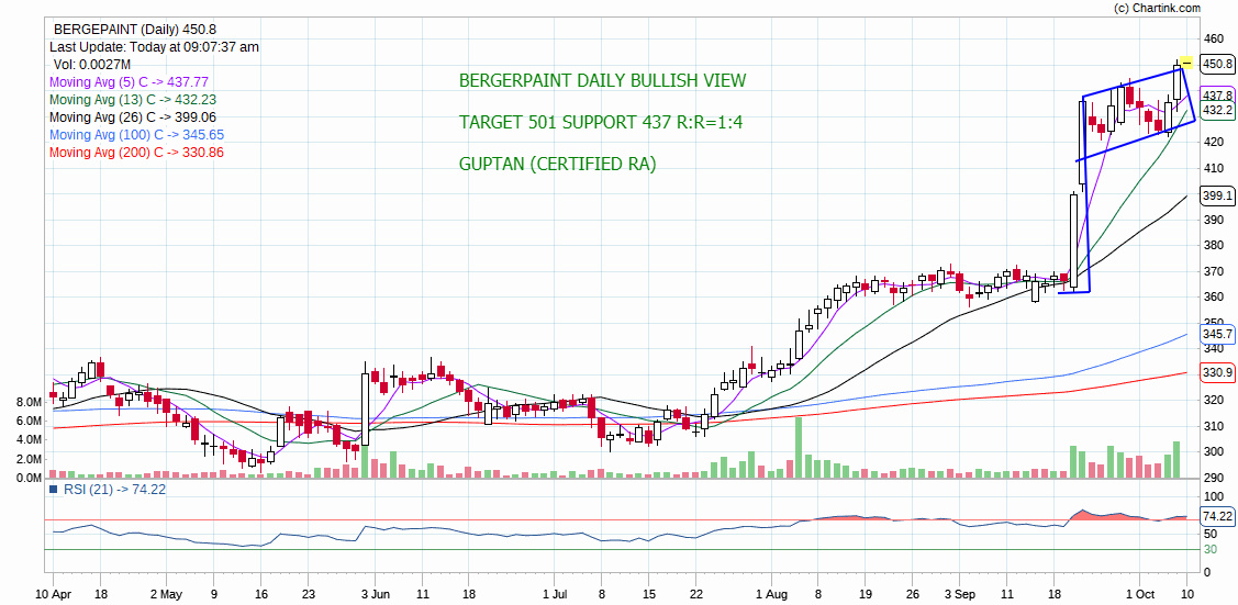 BERGEPAINT - chart - 392388