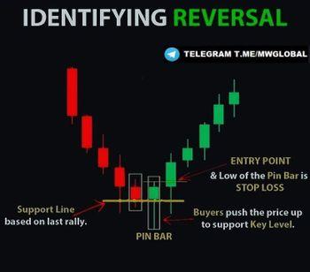 Investing University - chart - 4862777
